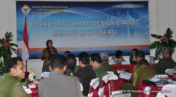 Sosialisasi Grand Design E-Audit
